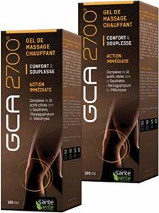 GCA 2700 gel – Gel Chauffant qui réunit 16 actifs ciblés dont l' Harpagophytum, l' Hélichryse et la Gaulthérie – Lot de 2 Tubes de 100 ml