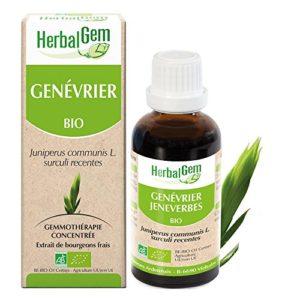 HerbalGem Macérats-Mères de Gemmothérapie Concentrée Genévrier Bio