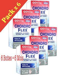 Urgo GOVital – Chondro Flex chondroitine glucosamine collagène MSM Vit C – SIX MOIS DE TRAITEMENT – Lot de 6 boites
