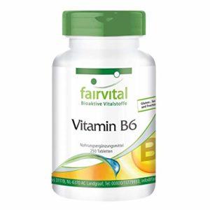 Vitamine B6 – pour 250 Jours – VÉGAN – 250 Comprimés – 22,5mg Pyridoxine…