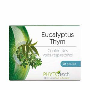 Yves Ponroy Eucalyptus Extraits de Thymus 20 Gélules