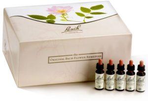 Fleurs de Bach Original – Élixirs floraux – Set cadeau – 38 x 10 ml