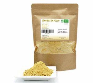 FRISAFRAN – Gingembre Bio en poudre – 250Gr (250Gr)