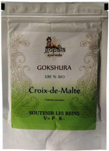 GOKSHURA (Tribulus terrestris) BIO en poudre (250 g) – Plante Ayurvédique Traditionnelle Soutenir les reins