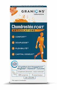 Granions Chondrostéo+ Fort 120 Comprimés
