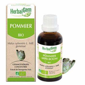 HerbalGem Macérats-Mères de Gemmothérapie Concentrée Pommier Bio