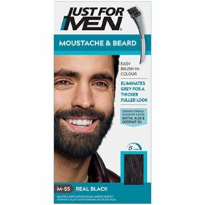 Just For Men Moustache et Barbe M55 Coloration Barbe, Noir, 28 g
