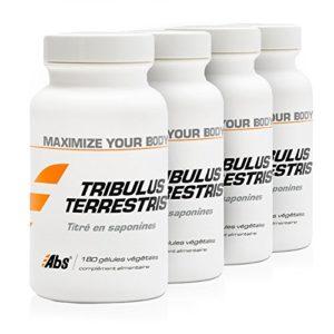 TRIBULUS TERRESTRIS PACK 3+1 GRATUIT   470 mg / 720 gélules   Energie (fatigue), Performances sportives (douleurs musculaires), Vitalité   Fabriqué en France
