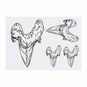 Azeeda 4 x 'Dent de Requin' Tatouages temporaires (TO00005541)