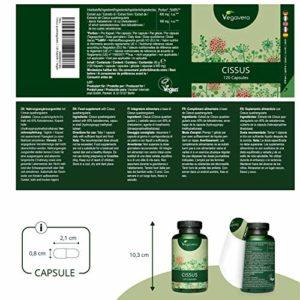 Cissus Quadrangularis Vegavero® | EXTRAIT Très Concentré | 650 mg d'extrait = 6500 mg de Cissus Quadrangularis | Avec 16,25mg de cétostérone | Testé et Certifié en Laboratoire | 90 gélules | Vegan