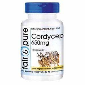 Cordyceps 650mg Le champignon pur (Cordyceps Sinensis) 120 gélules, sans additifs, végan