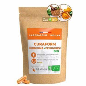 CURAFORM | Curqfen curcuma | 100% Naturelle, sans additif | Curcumine libre biodisponible + de 12 heures | Distribution tissulaire prouvée par études cliniques.
