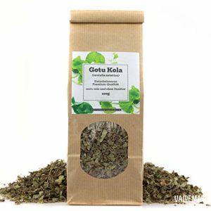 Gotu Kola Câble d'eau indien Asie pour narguilé 100 g Qualité premium et sorte, emballé à la main Centella Asiatica