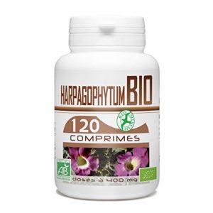 Harpagophytum Bio – 400 mg – 120 comprimés