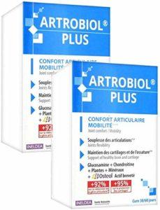 Ineldea Santé Naturelle – Artrobiol Plus – Complément Confort articulaire et musculaire – Pack de 2 Boites de 120 Gélules (2)