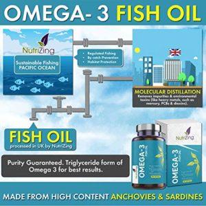 Supplément De Puissance De NutriZing Riche En Omega-3 – De 2000mg, 660 EPA 440 DHA Par Portion – 180 gels mous – Acides Gras Essentiels – Garantie de Remboursement