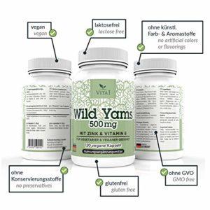 VITA1 Igname sauvage Wild Yams 120 gélules 500mg à forte dose extrait de racine d'ignames sauvages avec Vitamine E + Zinc végétalien Fabriqué en Allemagne