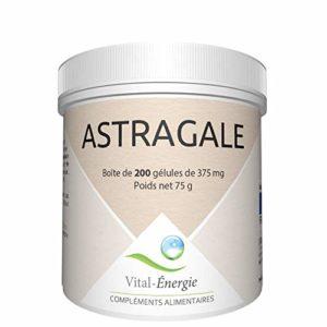 Vital-Energie Astragale 200 gélules