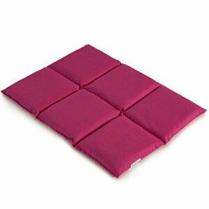Coussin aux grains d´épeautre biologique 40×30 – Coussin chauffant pour le dos – Bouillotte sèche – Compresse chaude ou froide (6 compartiments; Design: rose)