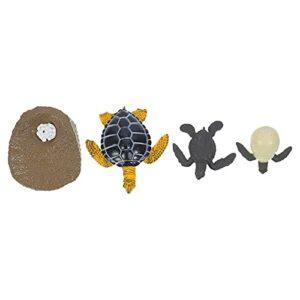 Hemoton 1 Set cycle de vie d'une tortue de mer Figurine de croissance différente pour enfants Jouet de croissance animale d'apprentissage Jouet de tortue préscolaire