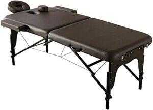 Table de massage portable professionnelle avec pieds en aluminium comprenant des accoudoirs pour le visage et un étui de transport